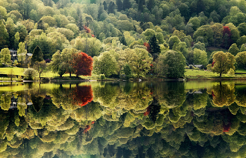 Joe-Stockdale,-United-Kingdom,-Shortlist,-Environment,-Youth-2013