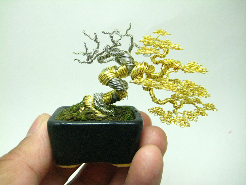 miniature wire bonsai tree by ken to 7 Bonsai Versions of the Worlds Tallest Tree