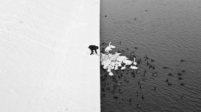 Picture of the Day: Contrast in Krakow