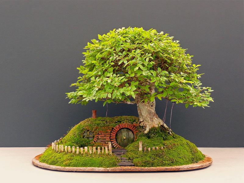 bonsai baggins hobbit home by chris guise (1)
