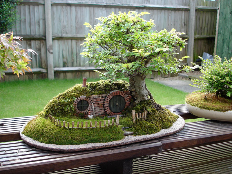 bonsai baggins hobbit home by chris guise 7 Bonsai Versions of the Worlds Tallest Tree
