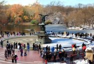 Picture of the Day: Central Park 90 Days Apart