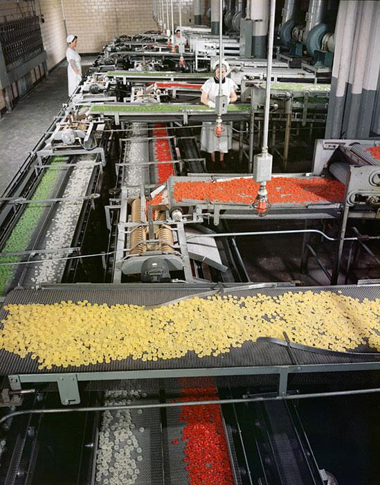 Life-Savers-Factory,-Port-Chester,-NY,-1956-ezra-stoller