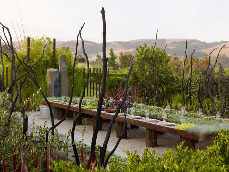 outdoor living garden table with plants and running water (3)