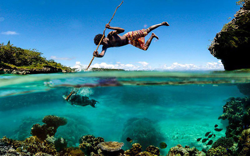spear fishing perfect timing