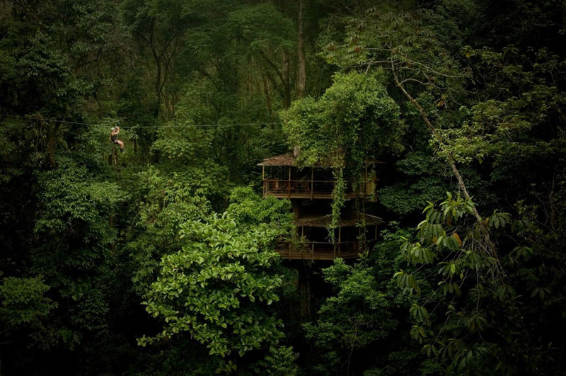 treehouse resort in costa rica finca bellavista 1 The Ultimate Adult Tree House