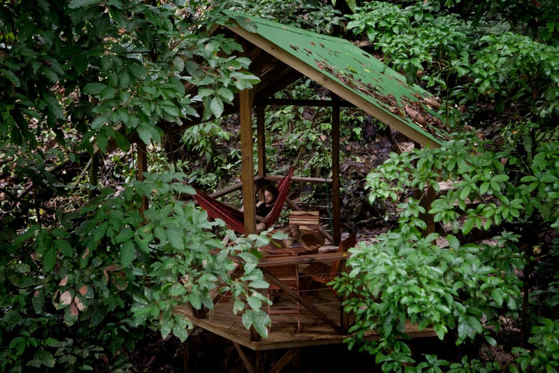 treehouse resort in costa rica finca bellavista (14)