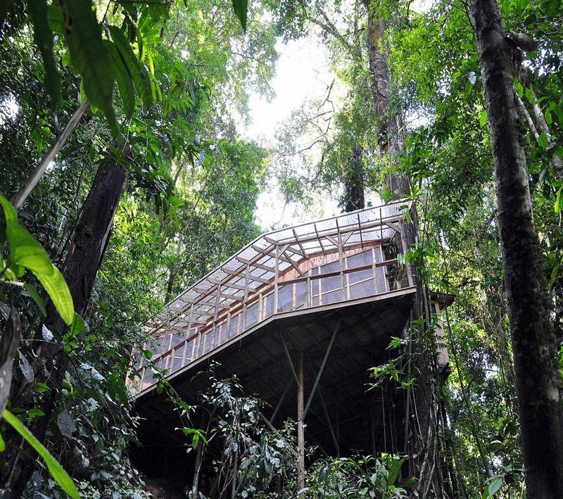treehouse resort in costa rica finca bellavista (15)
