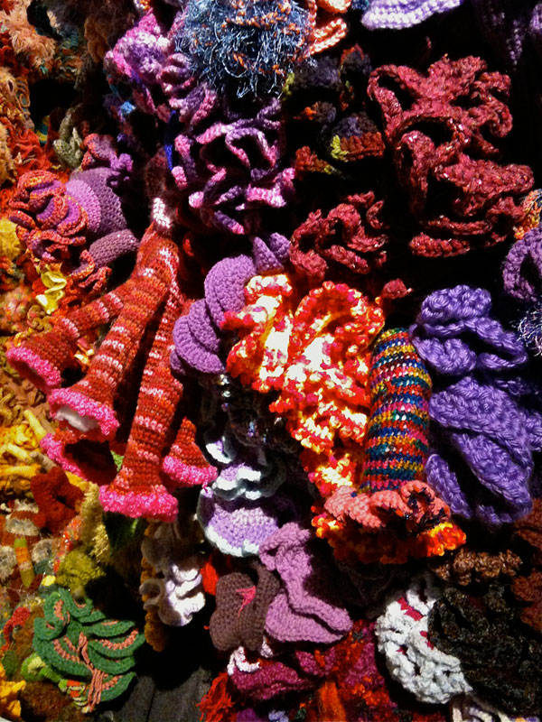 crocheted coral reefs (12)