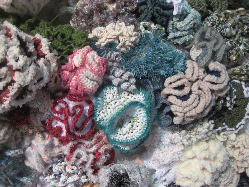 crocheted coral reefs (4)
