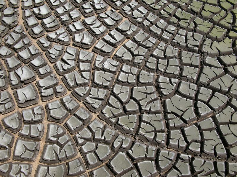 Desiccation-cracks