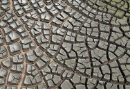 Picture of the Day: Desiccation Cracks