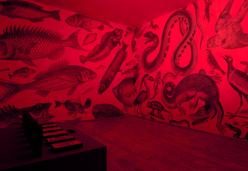 carnovsky rgb mural johanssen gallery berlin 2010 (3)