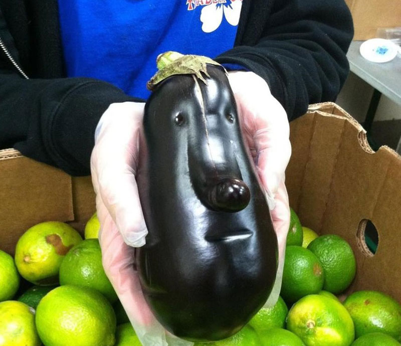 eggplant face 50 Faces in Everyday Objects