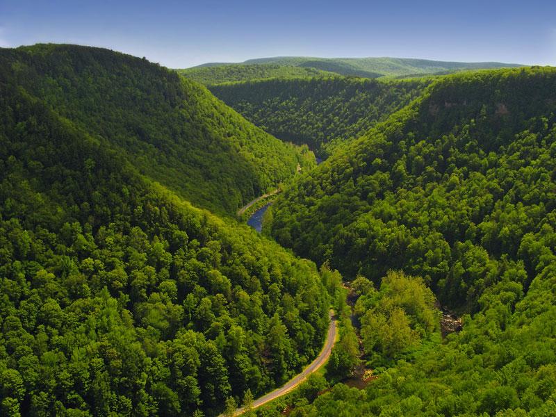 meandering-Pine-Creek-Gorge-Tioga-County-PA-USA