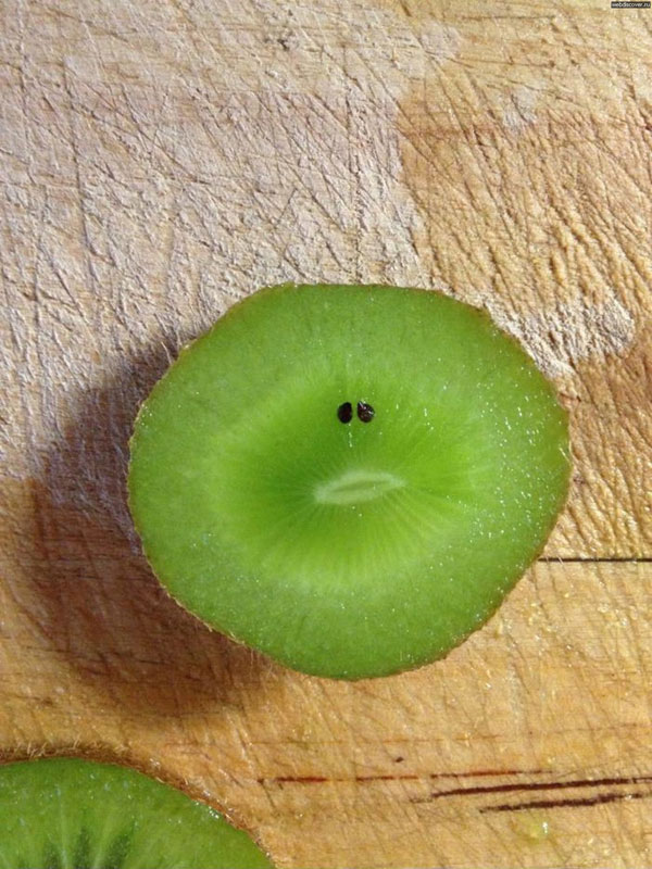 sad kiwi 50 Faces in Everyday Objects