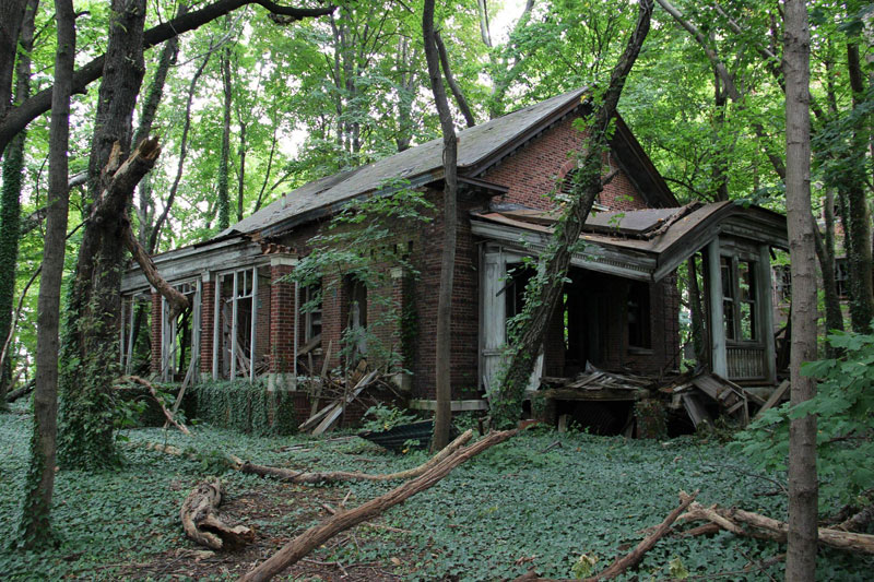 abandoned island new york city north brother island 2 Theres an Abandoned Village in China Being Overtaken by Nature
