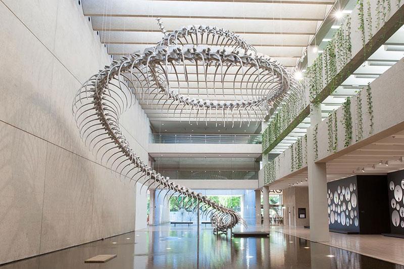 aluminum snake skeleton huang yong ping (2)