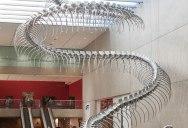 175 ft Snake Skeleton by Huang Yong Ping