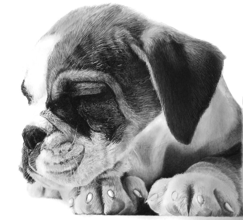 good night by francoclun d50bcmw Hyperrealistic Portraits Drawn with Pencil