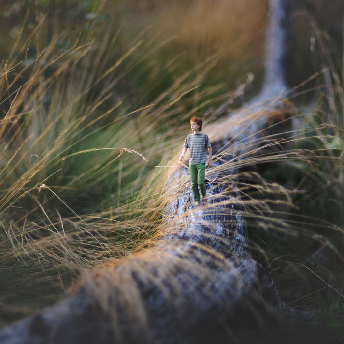 miniature world photo manipulations by fiddle oak zev nellie (3)