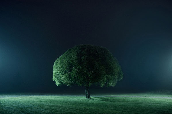 portraits of solitude by Mikko Lagerstedt (4)