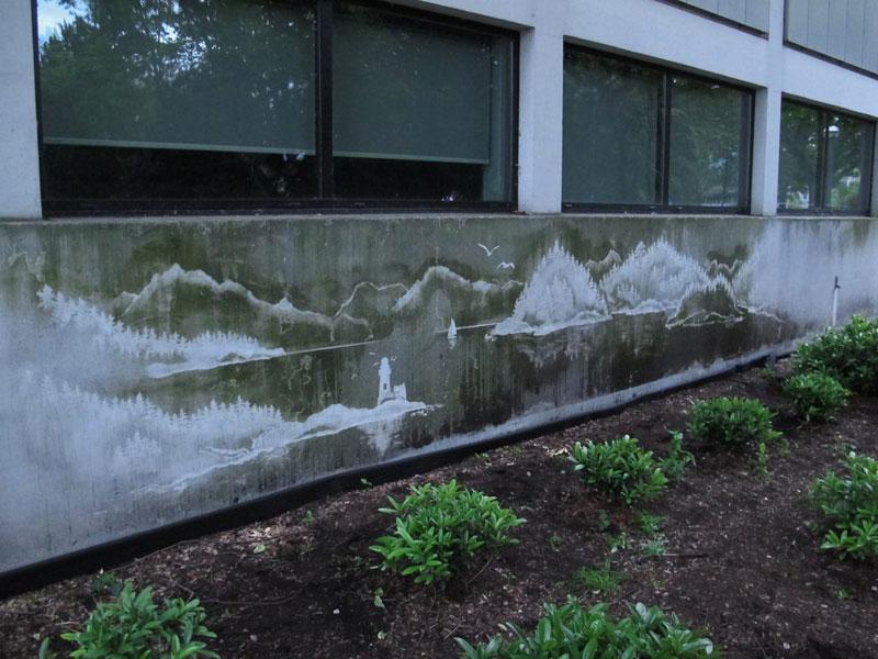 Reverse Graffiti by Tess Jakubec (1)