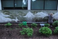 Reverse Graffiti: Washing Walls to Create Art