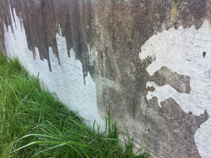 Reverse Graffiti by Tess Jakubec (5)