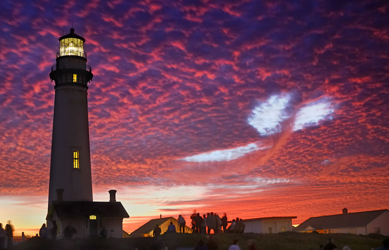 sky whale pigeon point Picture of the Day: The Sky Whale