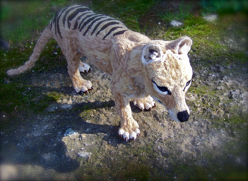 thylacine made from pipe cleaner chenille stem by lauren ryan (2)
