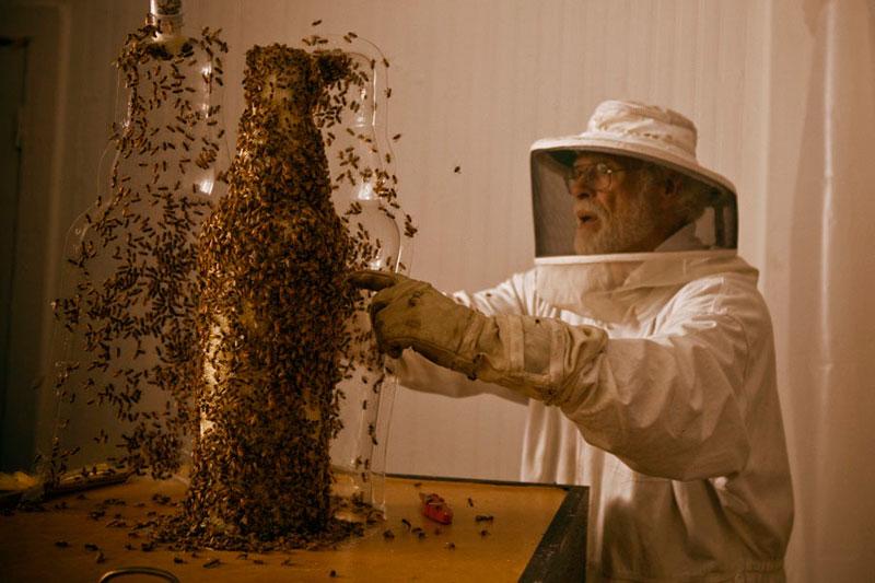 3-bee printing dewar's sid lee ebeling group honeycomb sculptures (6)
