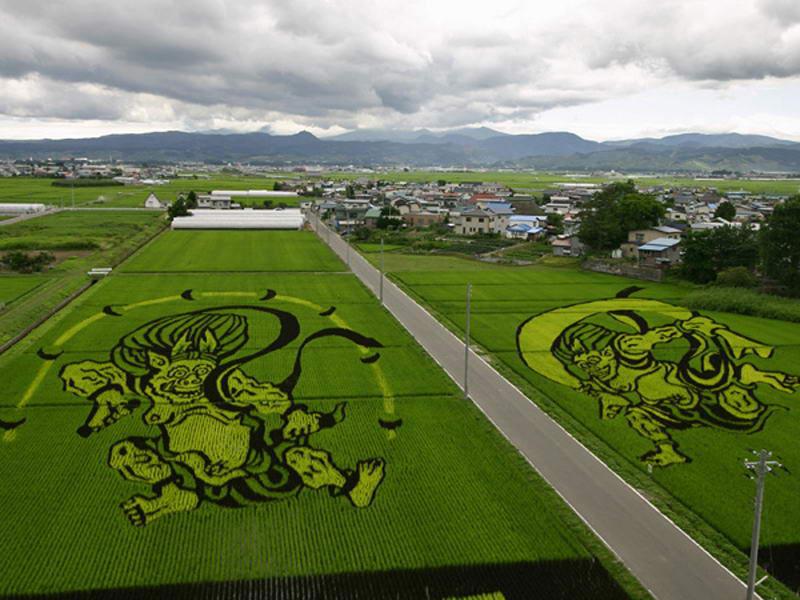 tanbo japanese rice field art (12)