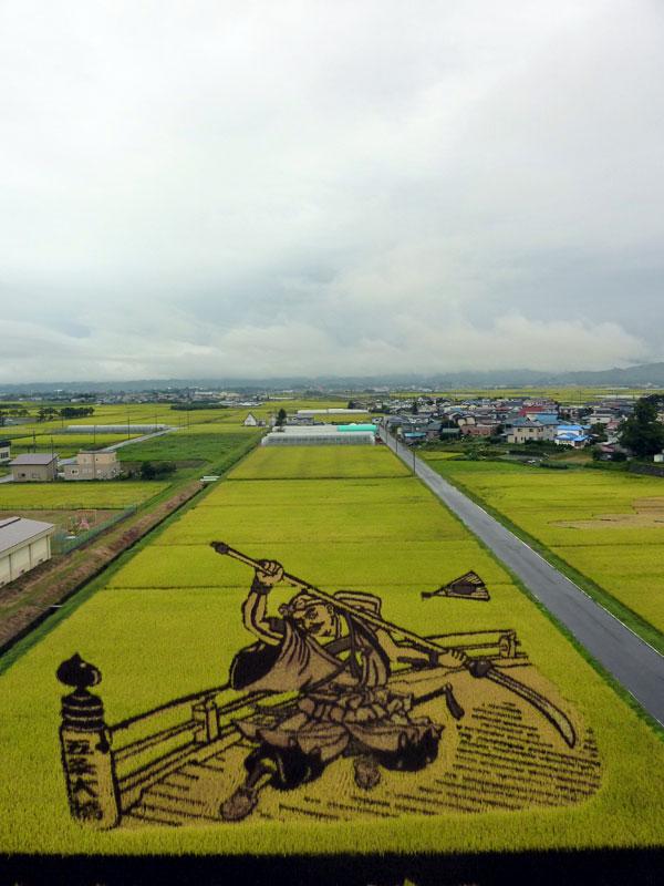 tanbo japanese rice field art (3)