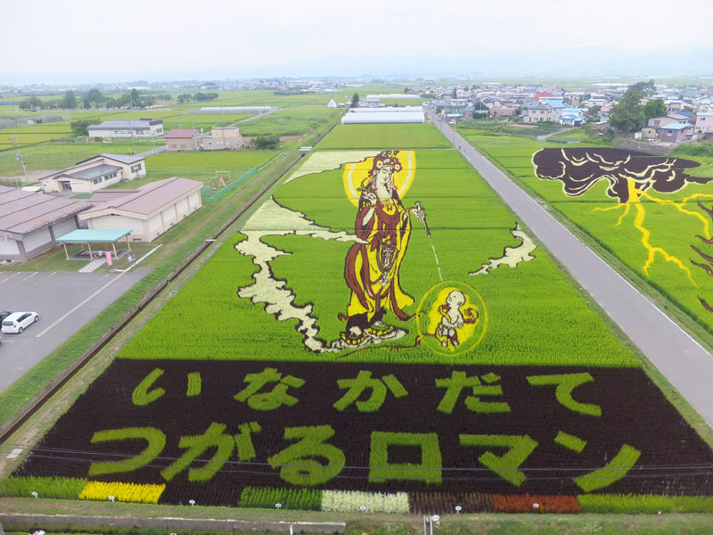 tanbo japanese rice field art (7)