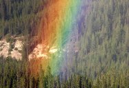What the End of a Rainbow Looks Like