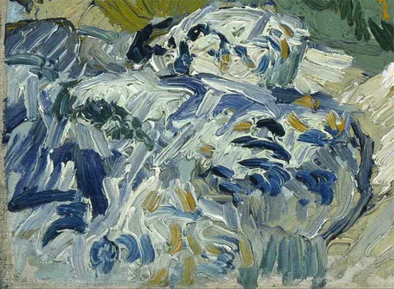 Vincent_van_Gogh-the-rocks-close-up