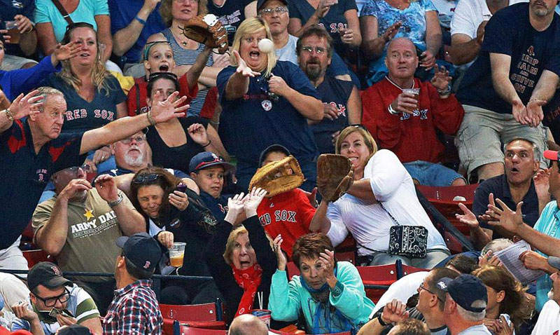 baseball fans react to fly ball The Shirk Report   Volume 229