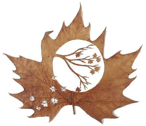 leaf cutting art lorenzo duran (15)