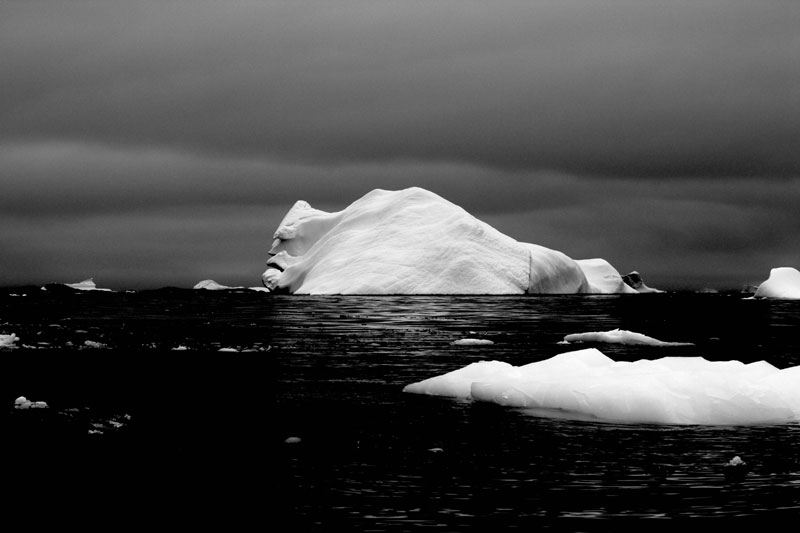 iceberg face antarctica Picture of the Day: The Face of an Iceberg