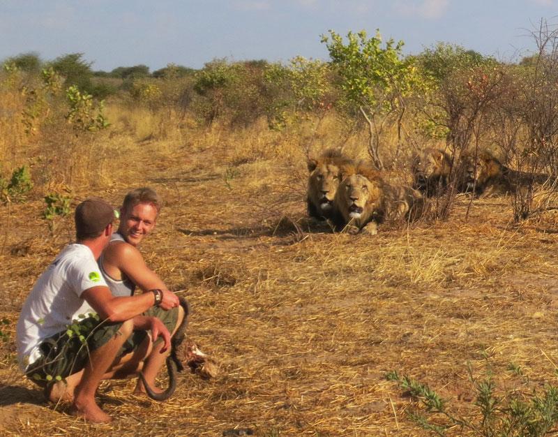 lion whisperers modisa botswana by nicolai frederk bonnen rossen (18)