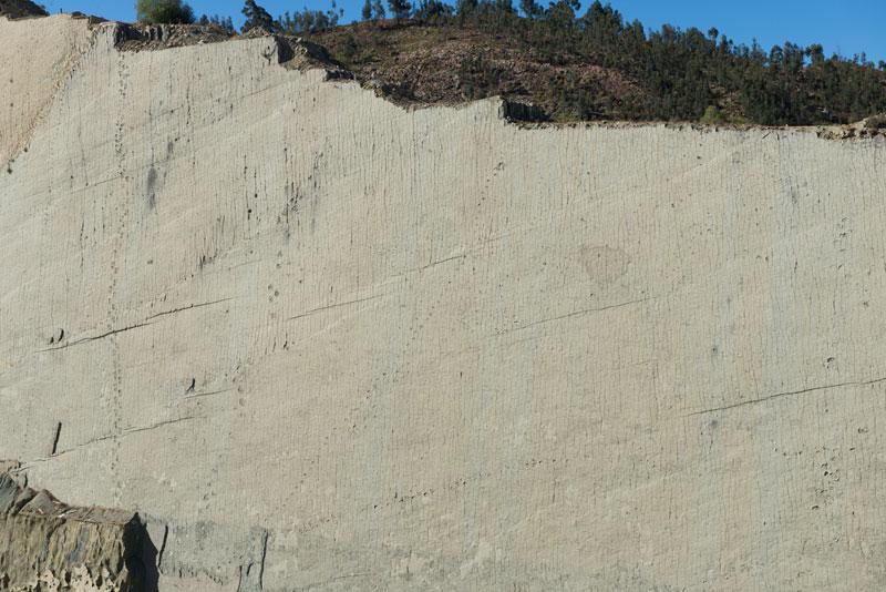 cal orko wall of dinosaur footprints sucre bolivia (11)