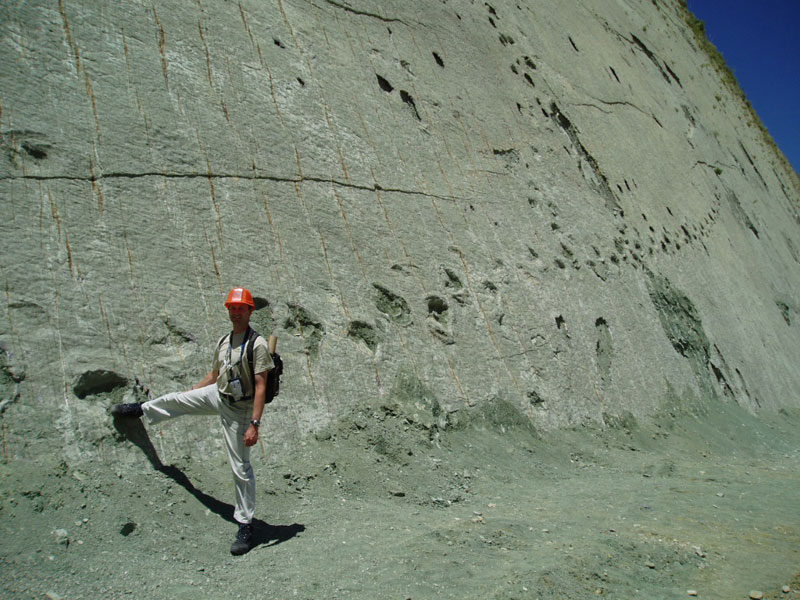 cal orko wall of dinosaur footprints sucre bolivia 2 Stunning 2200 Year Old Mosaics Discovered in Ancient Greek City