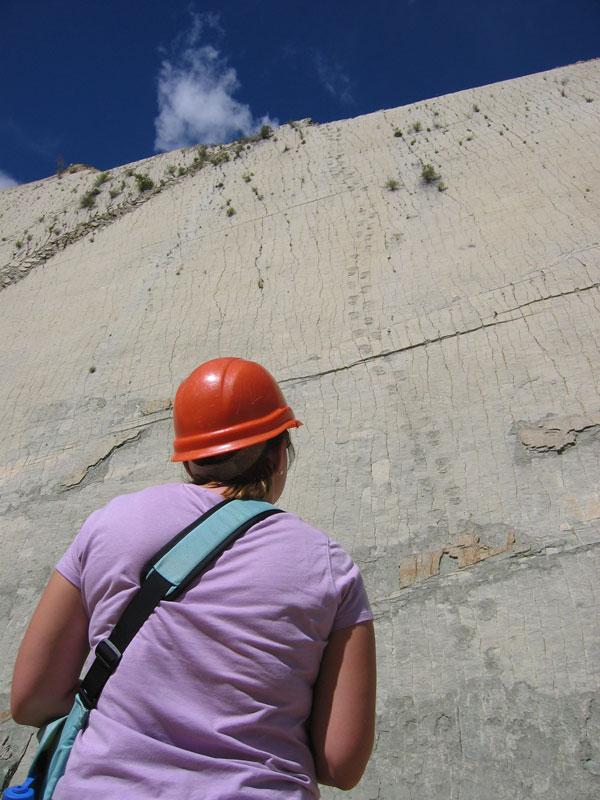 cal orko wall of dinosaur footprints sucre bolivia (8)