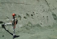 This 300 ft Wall in Bolivia has over 5000 Dinosaur Footprints