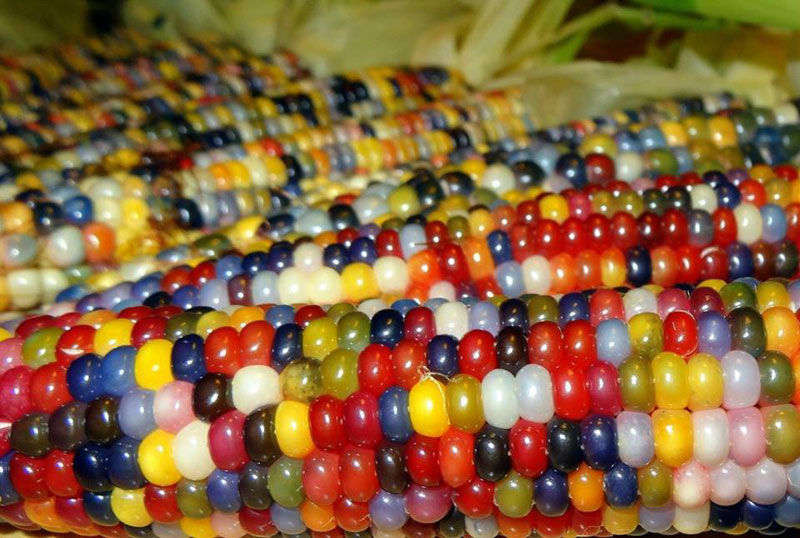 glass gem corn rainbow colored 1 These are the Coolest Rolling Pins Ever