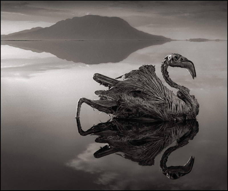 nick brandt across the ravaged land book 5 Mammatus Clouds Look Fascinating, Here are 18 Great Examples
