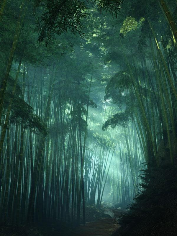 shadow warrior crossedwires 40 Cinematic Landscape Stills from Video Games