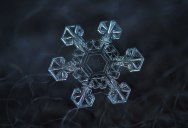 10 Amazing Close-Ups Show No Two Snowflakes are Alike