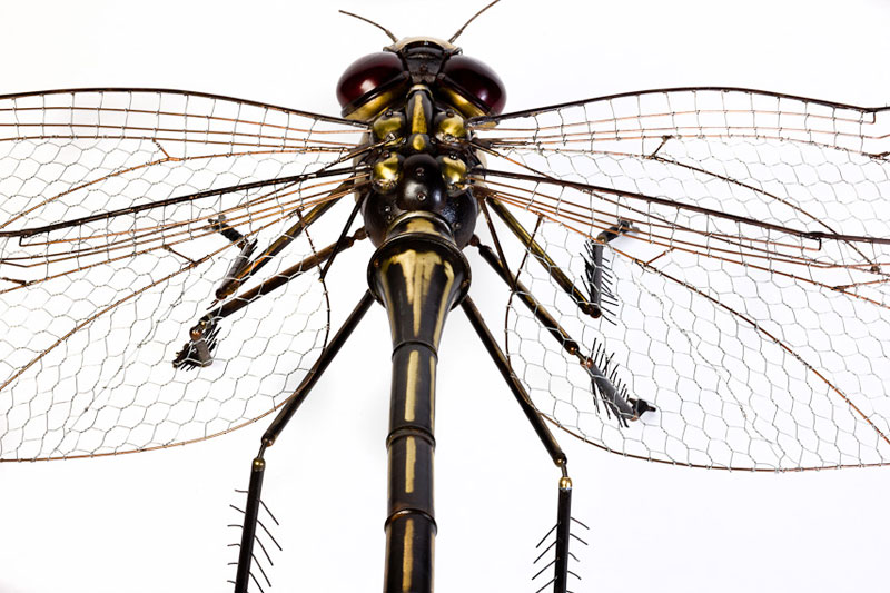 insects and animals made from scrap metal and bike parts edouard martinet (14)